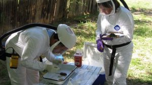 Apply to become a CDC disease detective